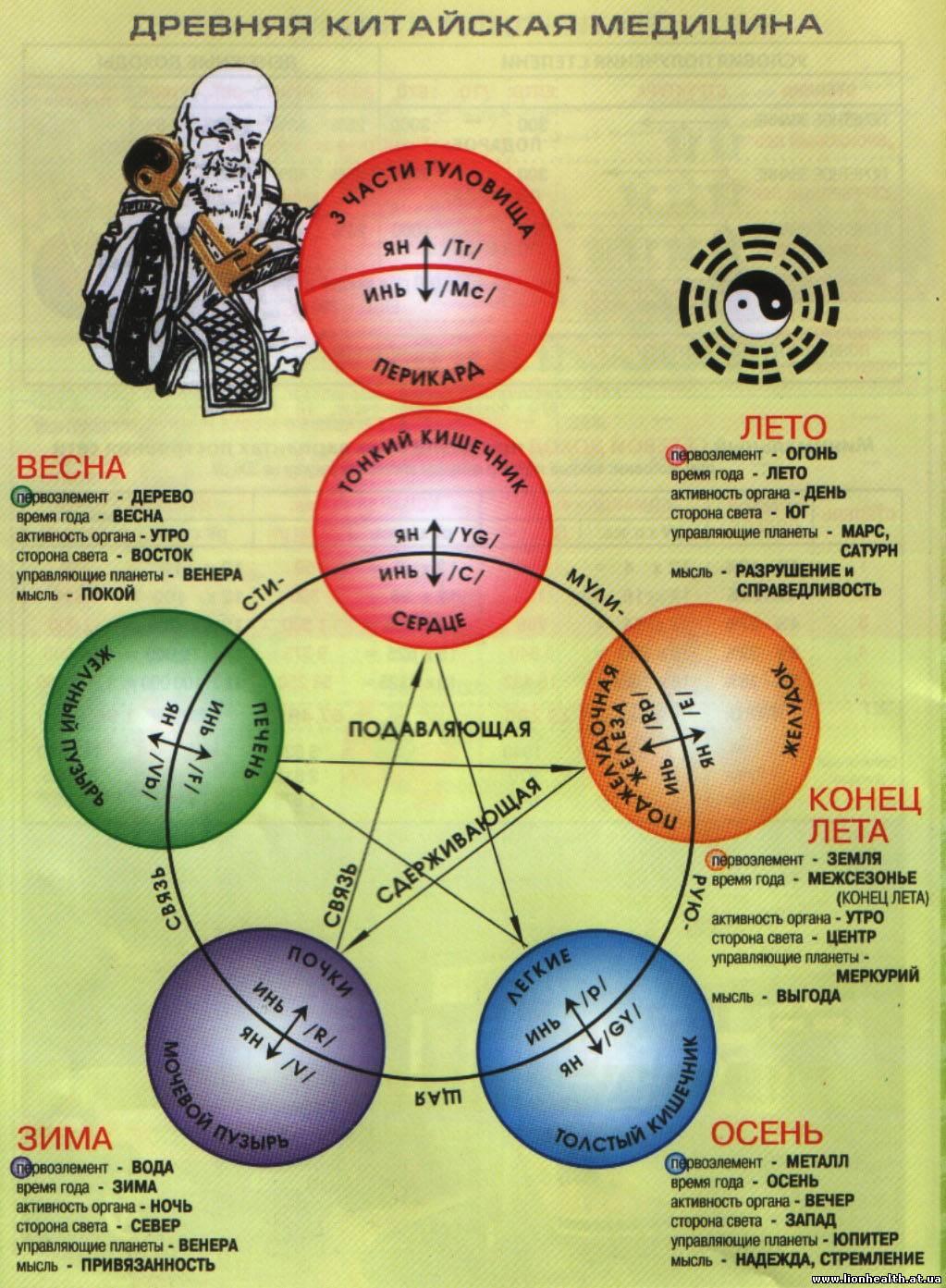 древняя китайская медицина, круг у-син