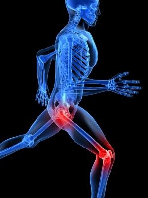 суставы, кости, опорно-двигательный аппарат, хондроитин, глюказамин